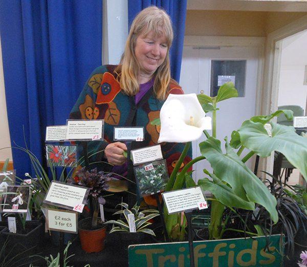 Triffids Nursery