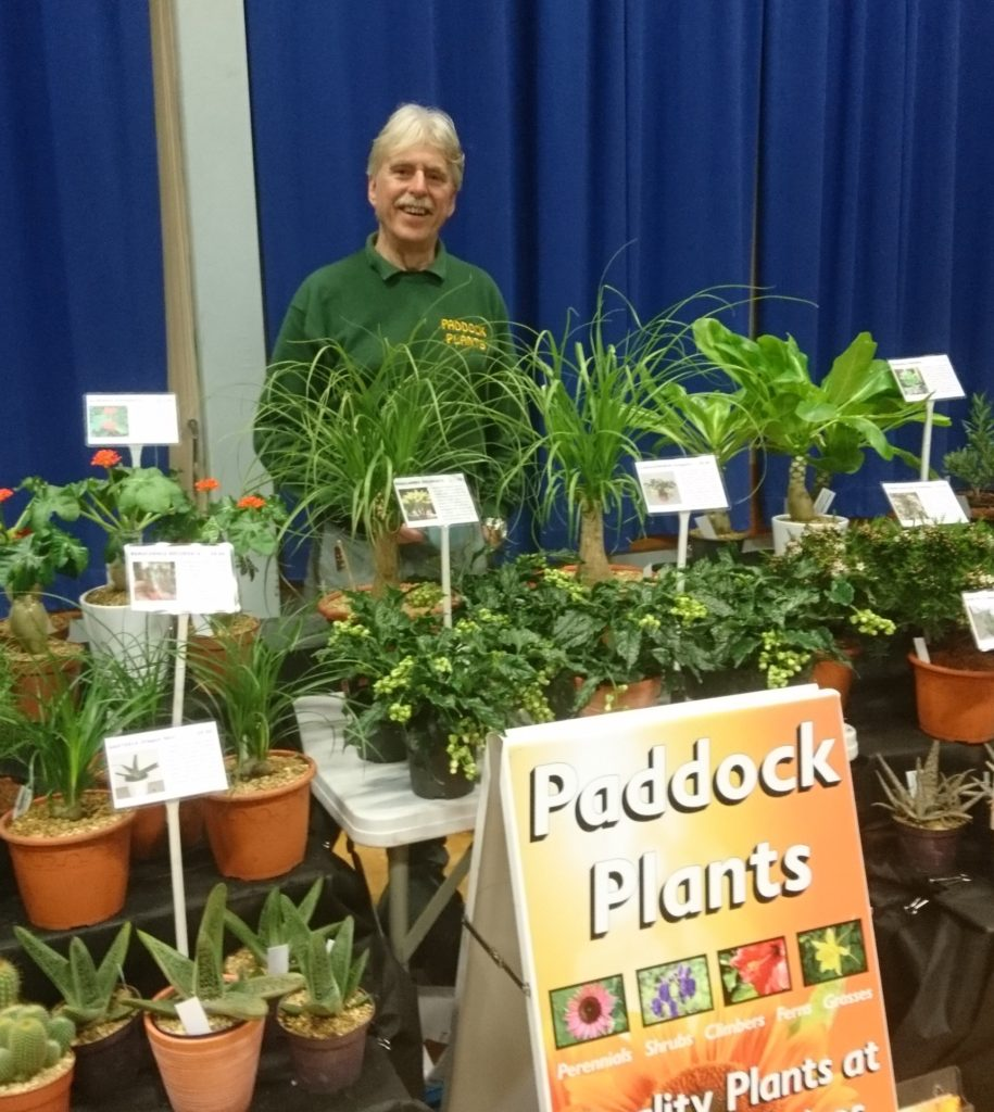 Paddock Plants at Sherborne Plant Fair
