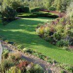 Special Plants garden