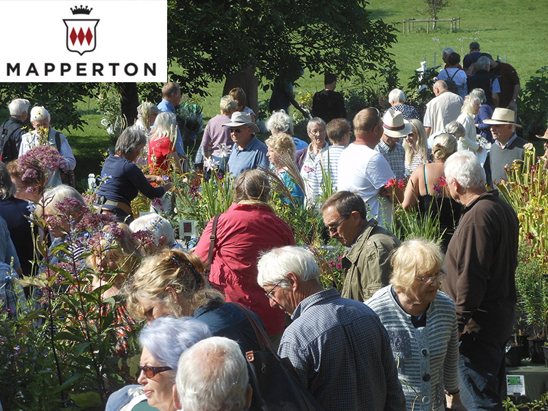 Mapperton Plant fair