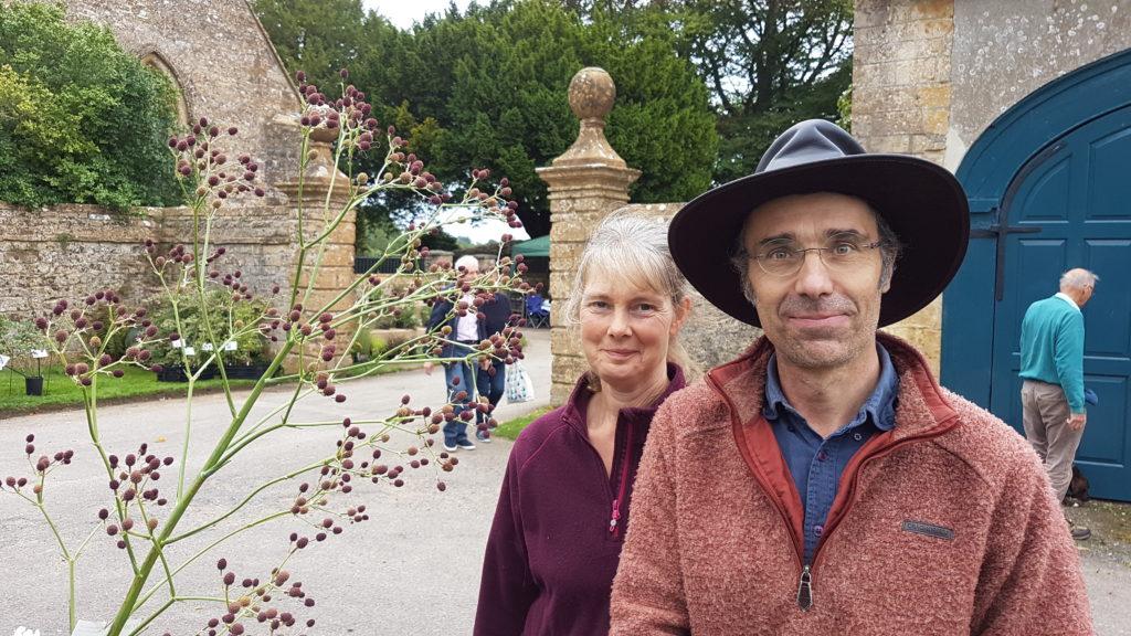 Dorset Perennials